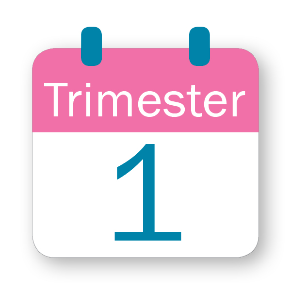 T 1 calendar icon (lowercase)1